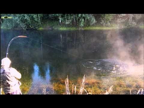 рыбалка на щуку летом на удочку на живца