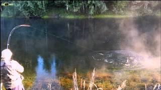 Рыбалка в РФ ловля Щуки на удочку на живца.