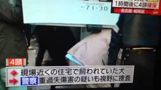 名古屋市昭和区で20代男性が耳などを噛まれる。