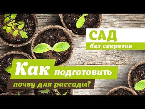 Вопрос: Как подготовить почву для сада?