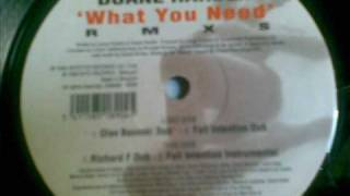 Powerhouse feat Duande Harden-What you need (Richard F Dub) 1999.