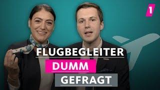 Baixar Sind Flugbegleiter nur Kellner? | 1LIVE Dumm Gefragt