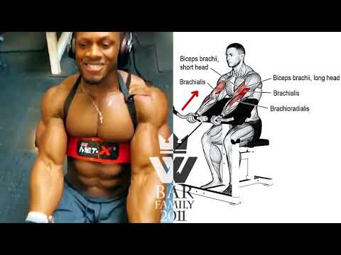 Snap Workout Triceps and biceps