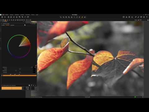 Capture One Pro 9 Webinar | Usare gli Aggiustamenti di Colori (IT)