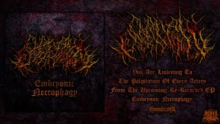 Chainsaw Castration - The Palpitation of Every Artery (feat Calum of OCD) [EP Track] (2015) Premiere