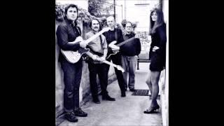 IndigoBlues - Turtle Blues(cover)