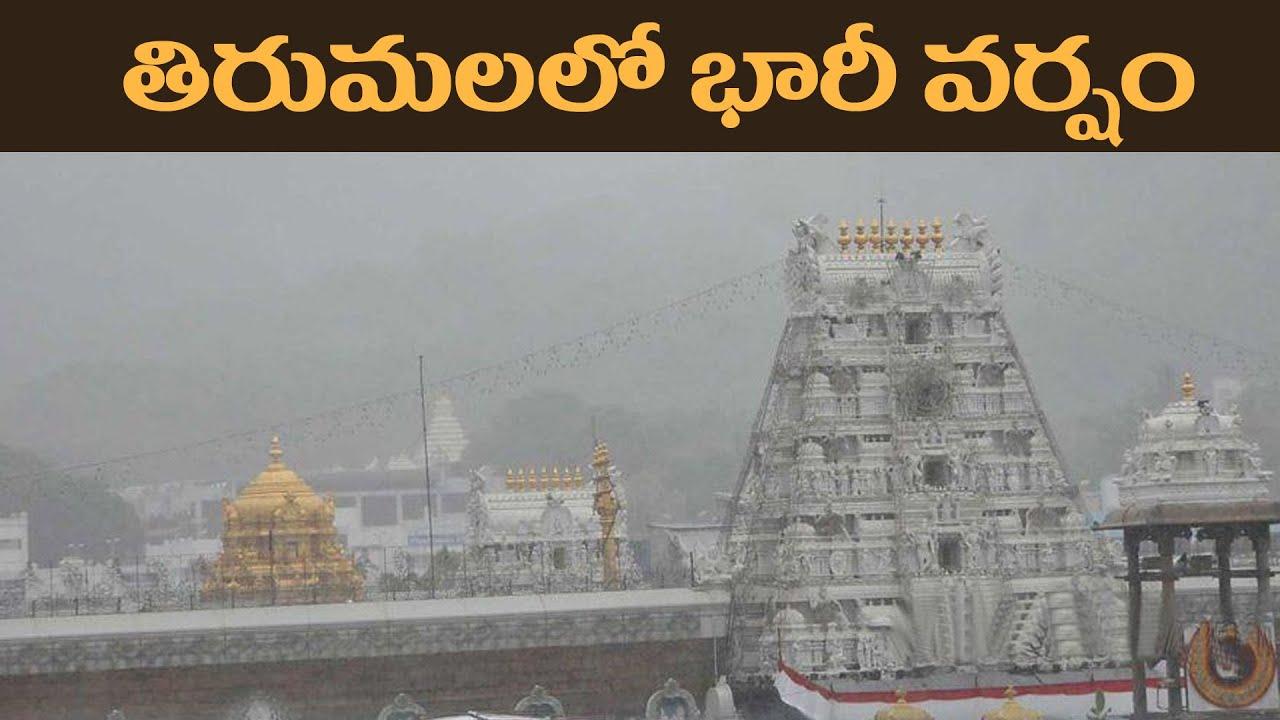 తిరుమల లో భారీ వర్షం..వెంకన్న ఆలయం చూడండి..! | Heavy Rain at Tirumala | Celebrity Astrology