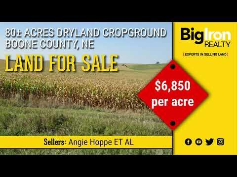 80± Acres Boone County, Nebraska - Land For Sale- BigIron Realty - SOLD