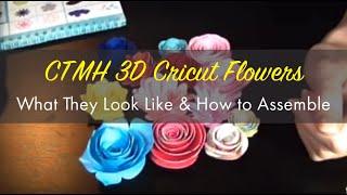 ctmh 3d cricut flowers