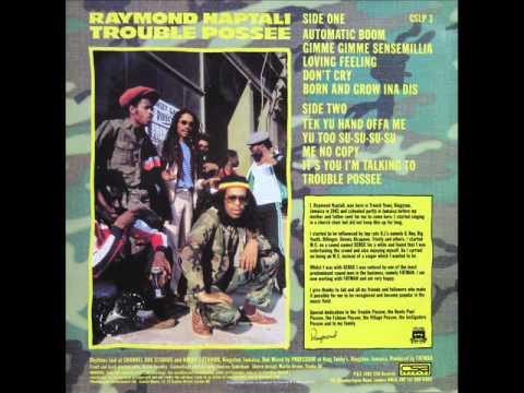 Raymond Naptali - Gimme Gimme Sensemillia