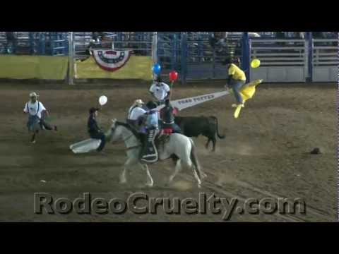 Rodeo Bull Totter - Western History?