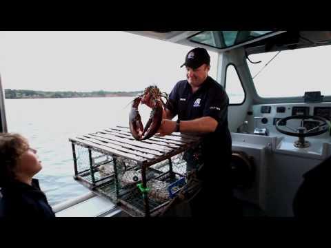 Lobster Feast in Charlottetown - Prince Edward Island, Canada