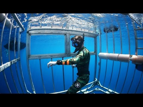Thumbnail: Swimming with Sharks Outside the Shark Cage! - Hawaii (Open Ocean)