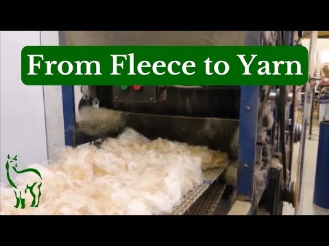 From Fleece to