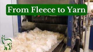 From Fleece to Yarn ~ Tour of a Fiber Mill