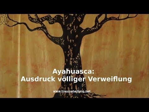 Ayahuasca: Ausdruck völliger Verzweiflung