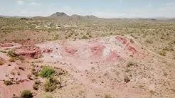 Vulture Bait - Morristown, AZ