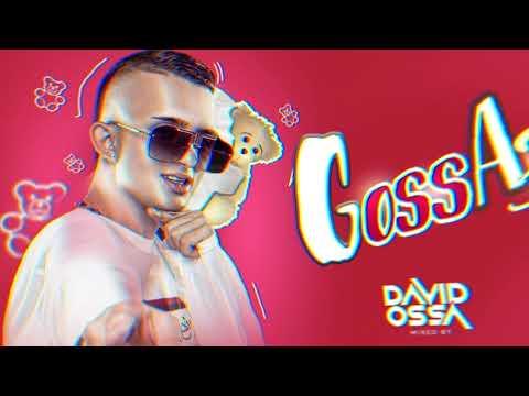 Download GOSSA 3.0 🧸 (Guaracha, Aleteo y Zapateo)