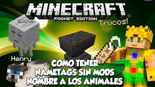 Trucos Minecraft PE 0.15.0 - COMO TENER NAME TAGS - PONERLE NOMBRE A LOS ANIMALES SIN MODS!