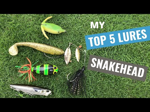 TOP 5 Lures For Snakehead Fishing (India 2020)