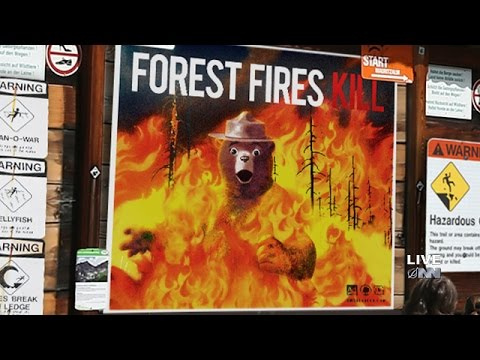 u s forest service kills off smokey bear to get people serious