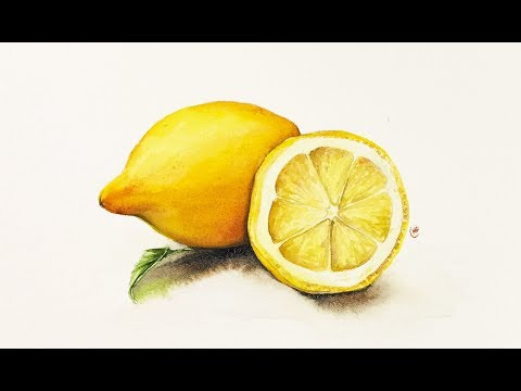 Watercolor Realistic Lemons Painting Tutorial