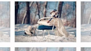 Презентация зимней свадьбы от Свадебного агентства Ажур www.ajur.weddings.ua
