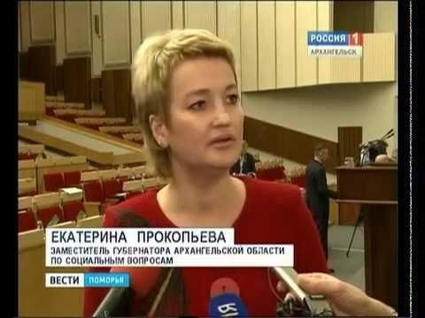Ремонт дороги от Брин-Наволока до Плесецка будет продолжен - решили депутаты областного Собрания