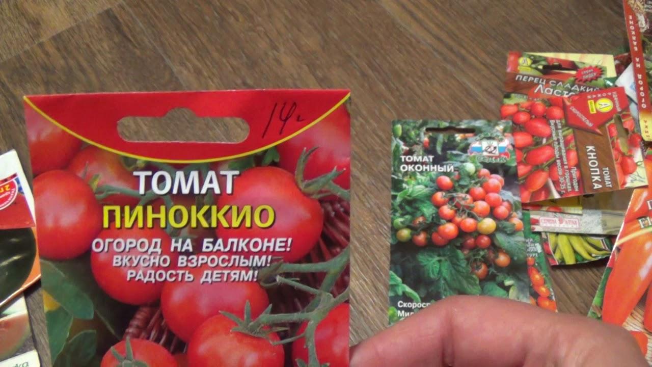 Выращивание зелени на подоконнике. Домашний розмарин. - YouTube