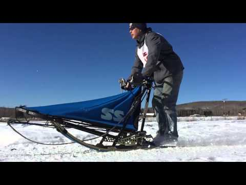 Open North American Championships - Sled Dog Race In Alaska