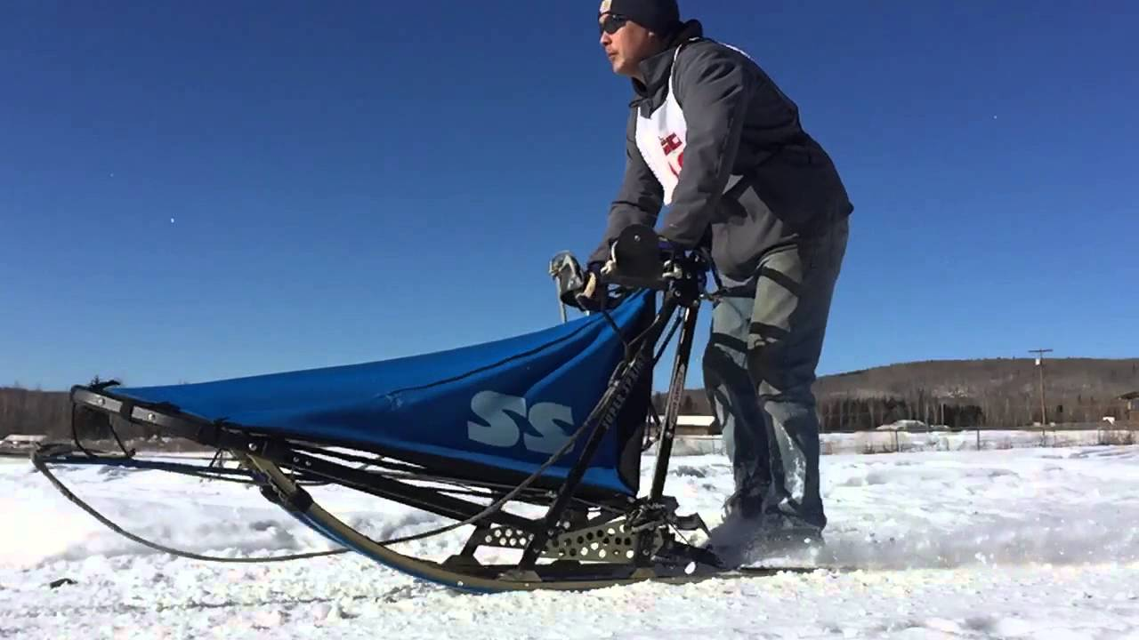 dog sled equipment - 1280×720