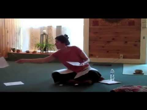 Introduction to Acupuncture and Traditional Chinese Medicine by Amanda Lewis, LAc