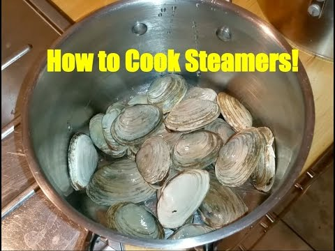 How to Cook Steamers: A.K.A. Softshell Clams, A Super Easy Recipe