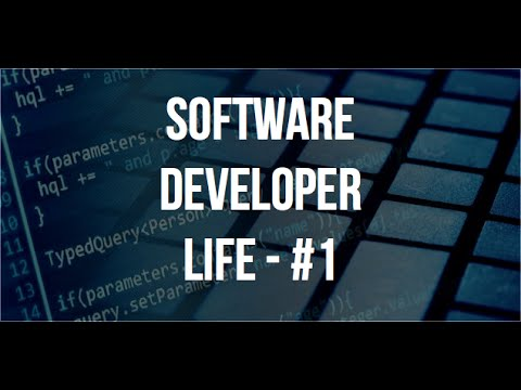 Software Developer Life - Ep. #1