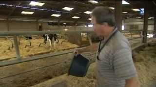 Les producteurs laitiers en colère à Surgères