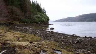 Bryan John Appleby - Cliffs Along the Sea