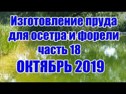 Изготовление пруда для осетра и форели (часть 18) ОКТЯБРЬ 2019
