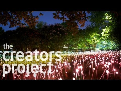 A Field of 20,000 Glowing Lights | Bruce Munro at Cheekwood
