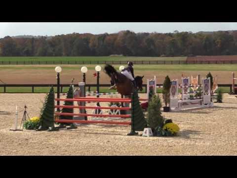 Cyraneiky Ridden by Erin Stewart | Grand Prix of Princeton | PSJ 10:16
