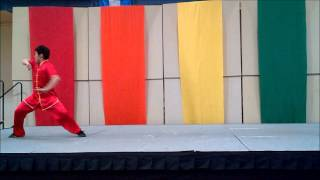 Soaring Eagle Kung Fu Performance at Elk Grove Village Celebration of Culture