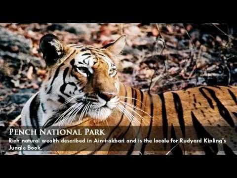 Memorable India - Khajuraho and Central India Wildlife Tour