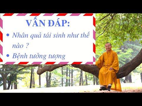 Vấn đáp: Vong linh trong Phật giáo, xuất gia cầu đạo, tái sanh theo nhân quả (01/08/2011) Thích Nhật Từ