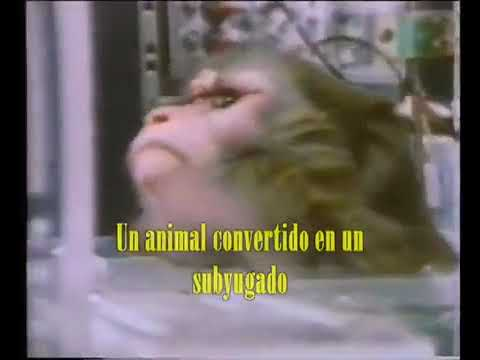 Earth Crisis -  Deliverance  (1994 - Vegan Sxe Hardcore)