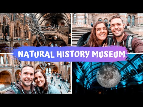 VLOG | The Natural History Museum!