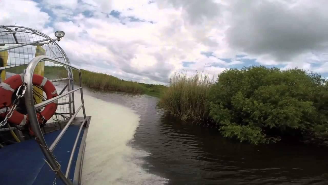 gopro florida  black hammock airboat adventures gopro florida  black hammock airboat adventures   youtube  rh   youtube