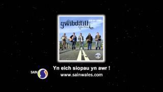 Hysbyseb CD Gwibdaith Hen Fran - Yn ôl ar y ffordd