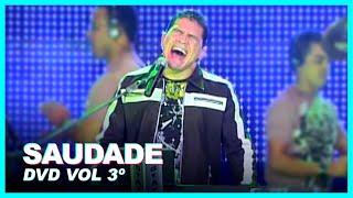 SAUDADE - Washington Brasileiro (DVD Vol 3º)