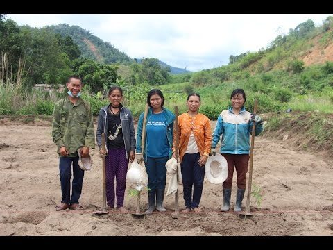 ORGANIC AGRO-FORESTRY TRAINING WITH ETHNIC MINORITY FARMERS IN VIETNAM 2016 [Voice Over] [R8]