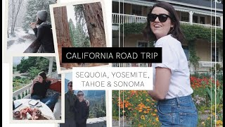The California Vlog: Week Two | The Anna Edit