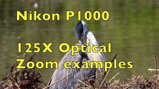Nikon P1000 125X Optical Zoom Handheld!